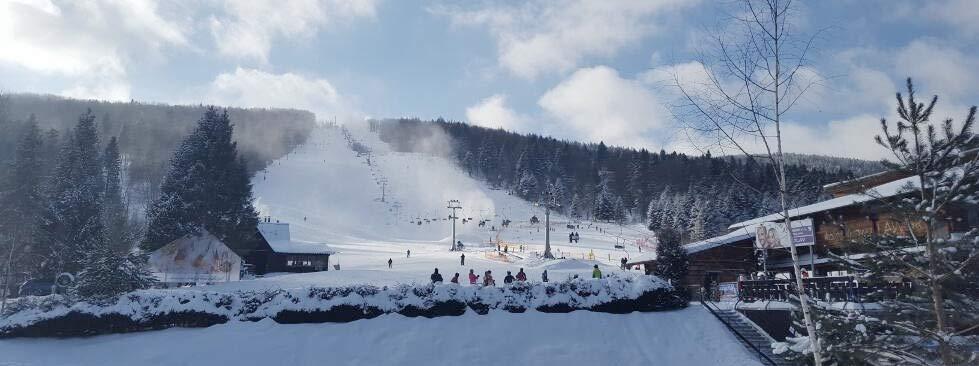 Stoki narciarskie Bieszczady Laworta