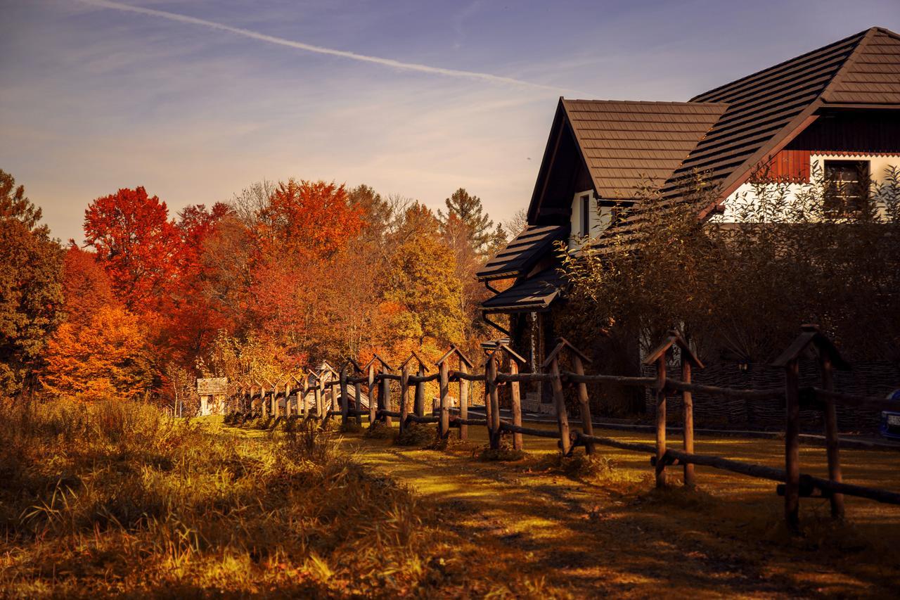 zagroda krasna jesien